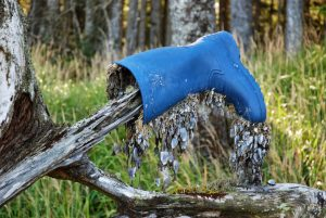 The Blue Boot | Short Story